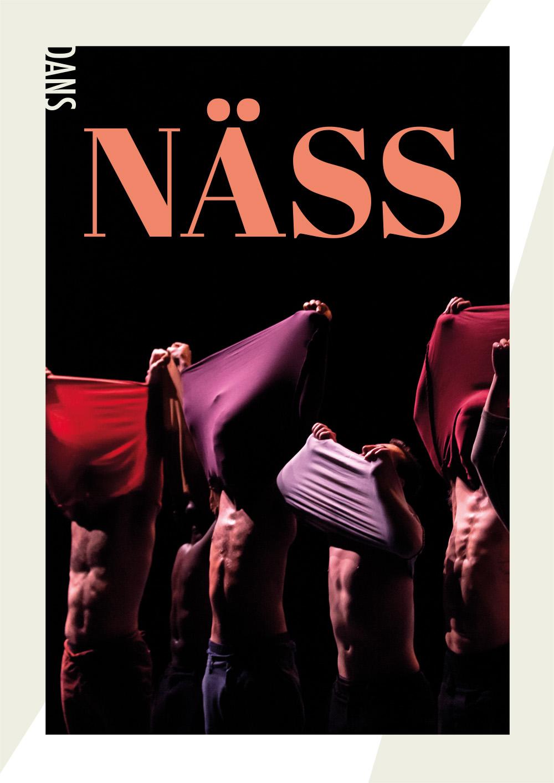 Regionteatern. Affischfoto för Näss